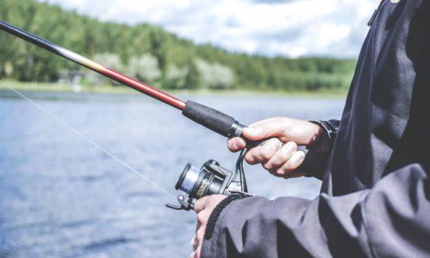 De ultieme checklist voor vissen